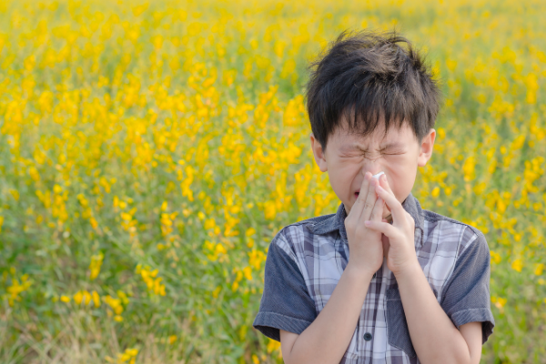 Seasonal Allergies and Your Child